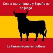 TORO Y ESPAÑA